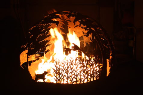 fire pit with dog flushing pheasants