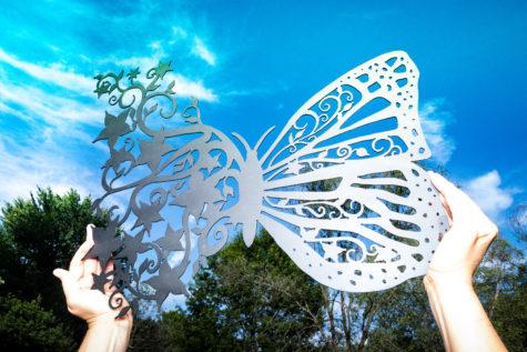Butterfly Flights_Fancy_04