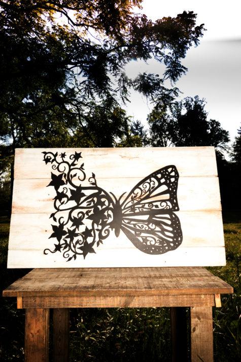 Butterfly Flights_Fancy_05