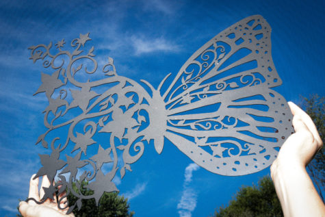 Butterfly Flights_Fancy_06